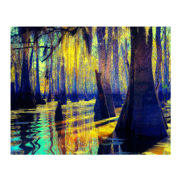 Bayou Blues