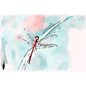 dragonfly-impressionistic