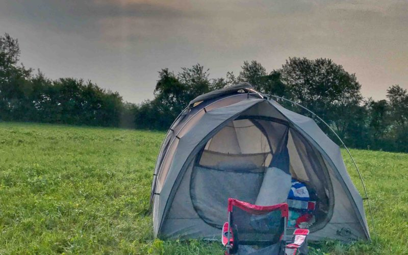 Camp 80: A Love Letter To Life