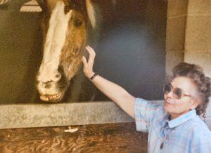 agingschmaging horsey