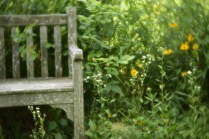 agingschmaging bench
