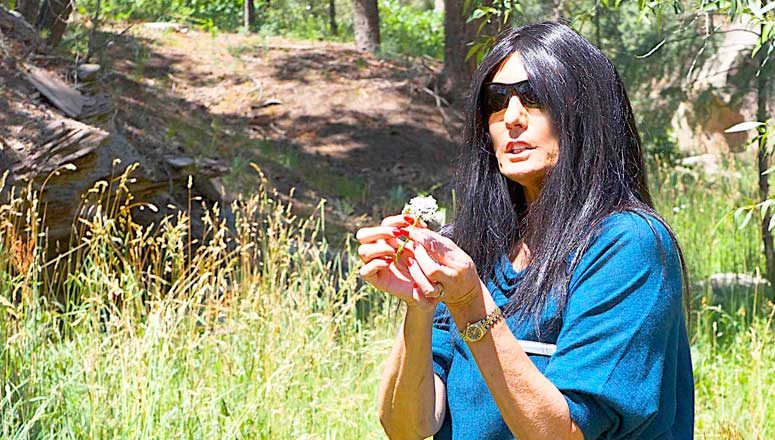 Dr. Tieraona Low Dog: Healer, Storyteller, Friend